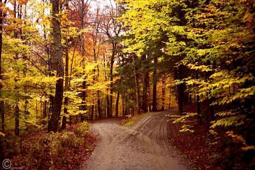Road Less Traveled >> I Ve Chosen The Road Less Traveled John 14 6 In The Bible I Ve