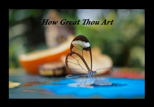 How Great Thou Art - Butterfly