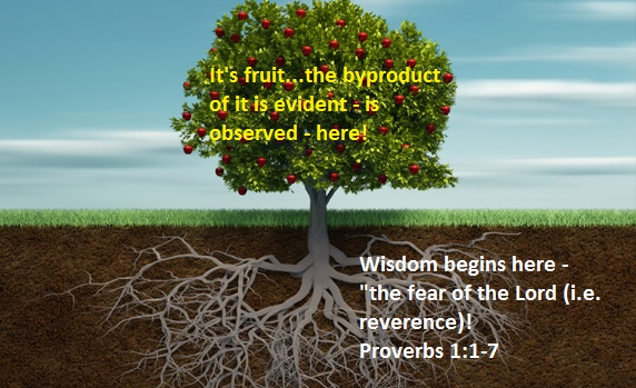 Fruit of Wisdom - Tree