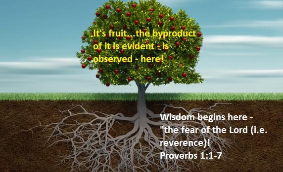 Fruit of Wisdom - Tree