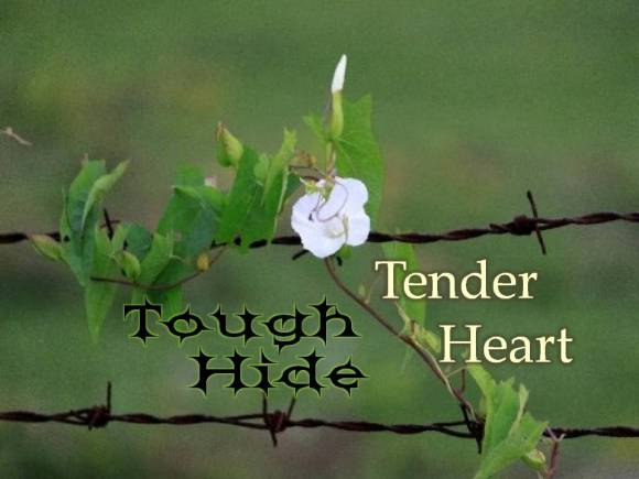 tough-hide-tender-heart