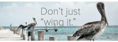 dont-just-wing-it