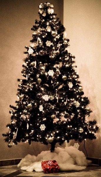Philippians 4[11-13 Christmas