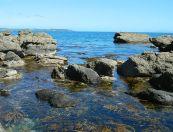 CWL Seashore